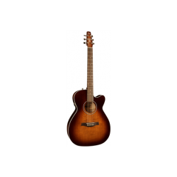 GUITARE FOLK ELECTRO ACOUSTIQUE SEAGULL PERFORMER CW CH...